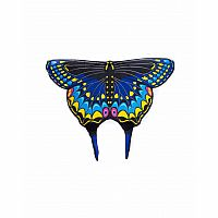 Black Swallowtail Wings